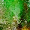Reflet de verdure...!!!