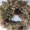 Yes. That is an evergreen wreath that I left up for too long. Go ahead, judge me. And now it has a bird's nest in it. With eggs. Does this mean it has transitioned from a Christmas decoration to an Easter decoration?  Thoughts.