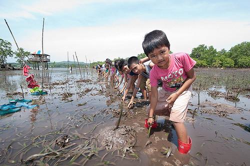 生態減災日益受到關注。(來源:UN ISDR)