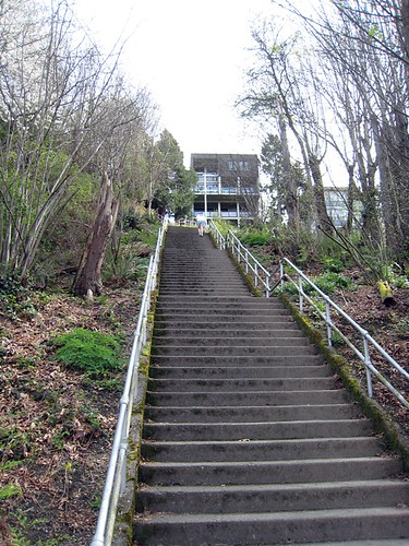 Bottom of Blaine Street Stairs - 293 to the top
