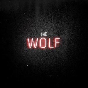 Mumford & Sons – The Wolf