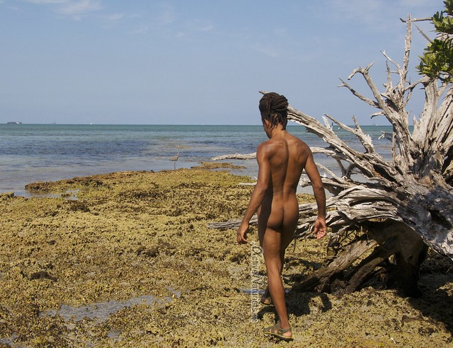 Key biscayne nudist #5