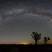 Joshua Tree Milky Way Panorama by Jeffrey Sullivan