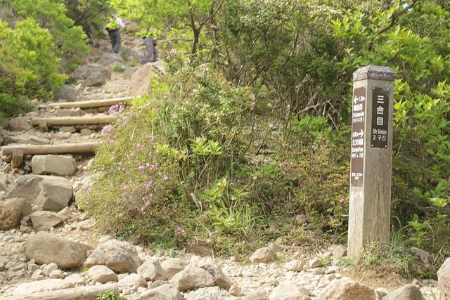20140601-韓国岳-0079.jpg