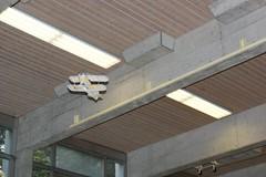 Hallenfliegen SchenkM 2011