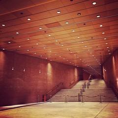 #visioni #auditorium #roma #noi