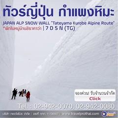 """ว้าว! โปรแกรม : ทัวร์ญี่ปุ่น กำแพงหิมะ 2558 : JAPAN ALP SNOW WALL """"Tateyama Kurobe Alpine Route"""" 2015 เปิด กรุ๊ปใหม่ เดินทางวันที่ 10-15 พ.ค. 2558 ถ้าอยากดูเพิ่มเติม เปิดแอพพลิเคชัน LINE SHOP และค้นหาโดย Shop ID """"LS109564"""" เลยจ้า #LINESHOP"""