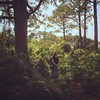 Exploring the jungle that is Florida with @jrae