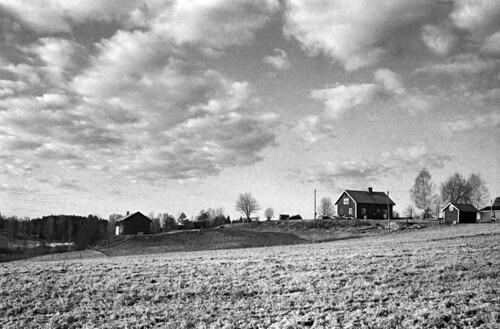 blackandwhite bw film rural 35mm minolta kodak trix grain rangefinder d76 135 expired filmphotography filmisnotdead himatic9 iamfilm believeinfilm