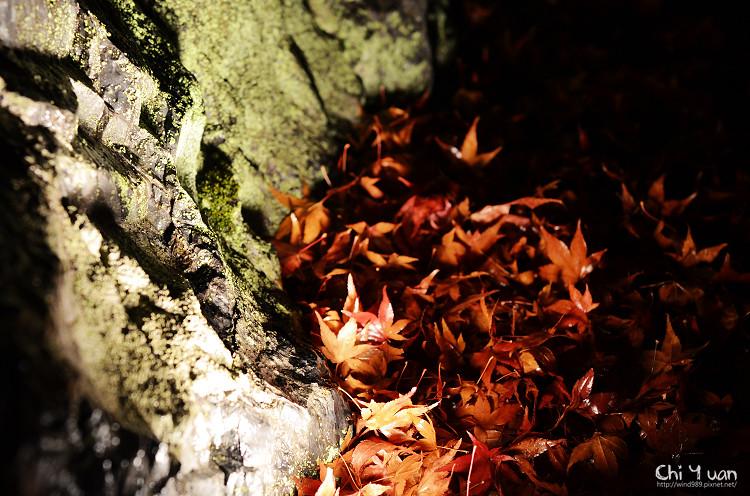嵐山寶嚴25.jpg