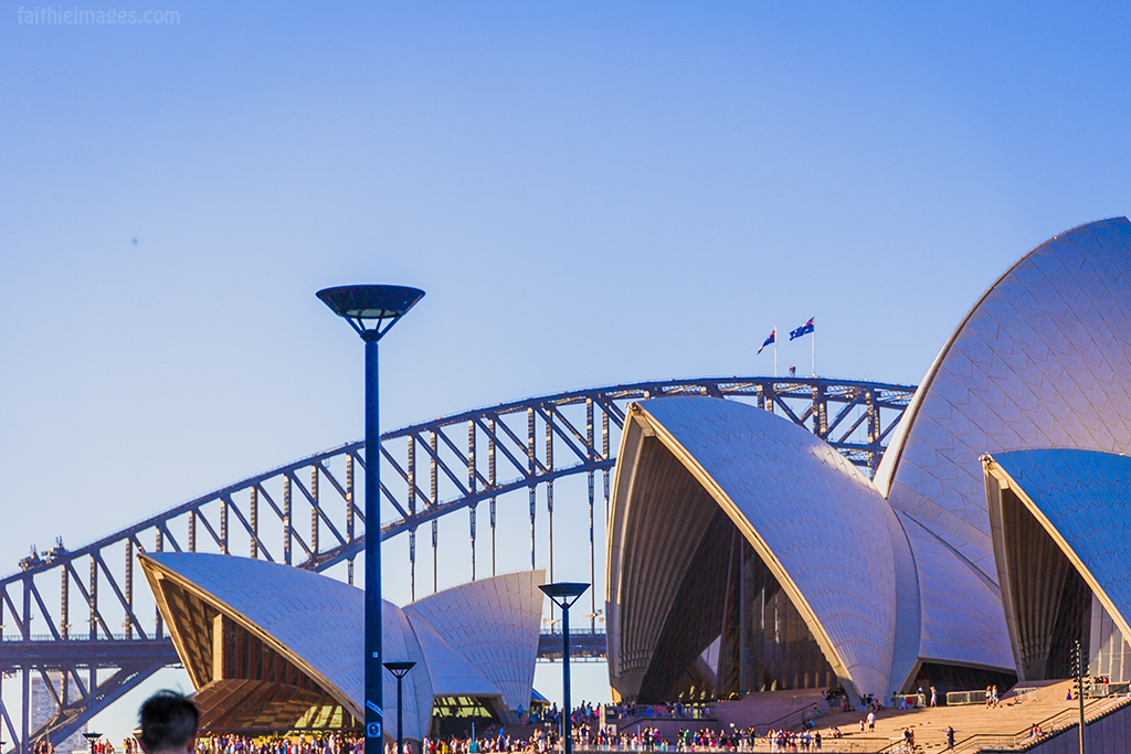 detail of the top of the Opera House with sunset light reflections