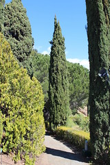Jardin Botanico La Conception