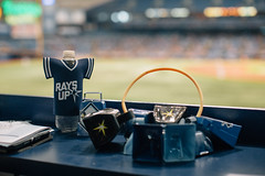 Tampa Bay Rays Baseball at Tropicana Field St. Petersburg Florida