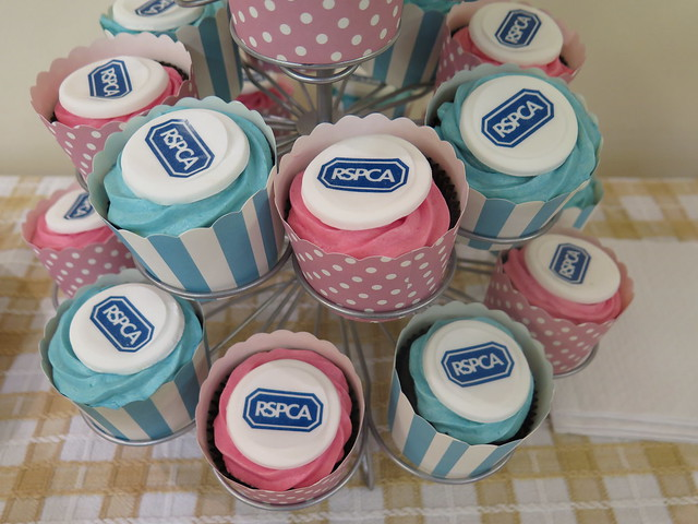 RSPCA Sheffield cupcakes