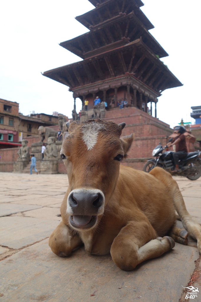 尼泊爾加德滿都-Nepal Kasthamandap37