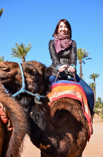 Camel Ride, Marrakech
