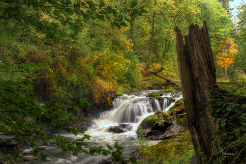 river waterfall washingtonstate hdr snag tumwater deschutesriver tumwaterfallspark 1riverat matthewreichel