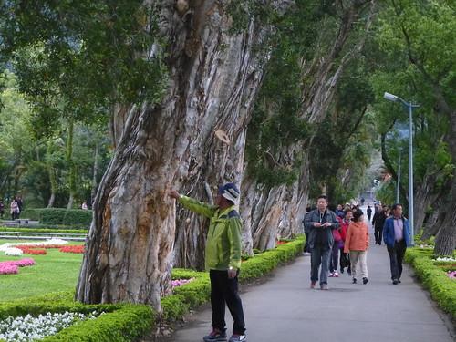 Ta-Taipei-CSK Shiling Residence Park (4)