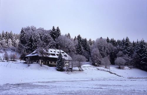 Winter keep