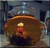 ODC-Tea In Bloom
