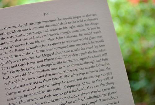 p. 313 - Americanah
