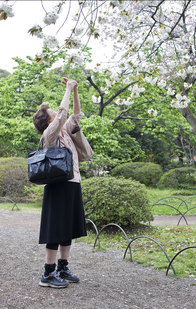 körsbärsblomning, shinjuku gyoen, tokyo, japan_IMG_4890