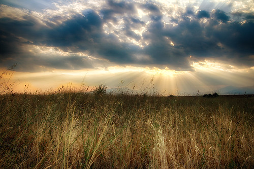 summer sky clouds sunset meadow dhrama greece κάμποσ wildflowers αγριολούλουδα σύννεφα ουρανόσ ηλιοβασίλεμα δράμα ελλάδα