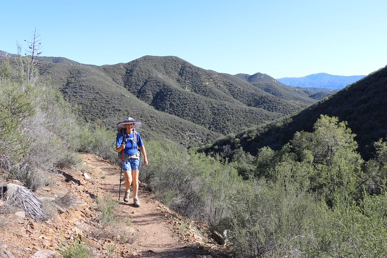 We continue gaining elevation and better views on the PCT