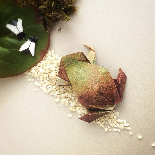 Origami Frog and Bugs by Paperaria