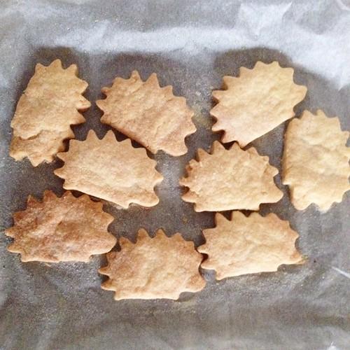 Biscuit hedgehogs