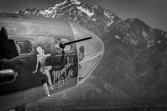 Memphis Belle-nose closeup-BW1