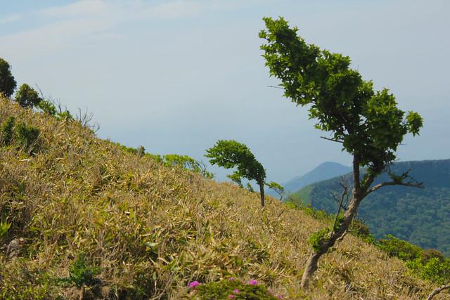 20140601-韓国岳-0114.jpg