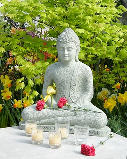 Spring Buddha