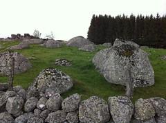 le plateau de l'Aubrac - Photo of La Fage-Montivernoux