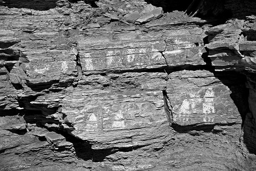 Pictographs in Big Bend National Park (Black & White)