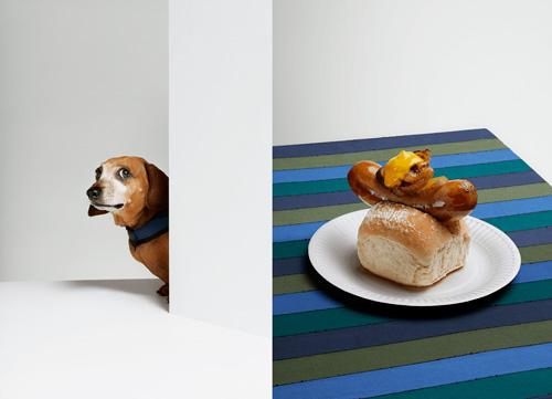 Dog_01_the_Gourmand