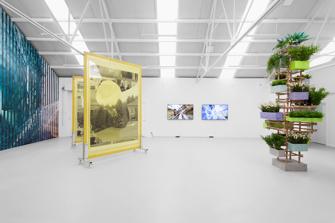 "Works from ""Constructed Culture Sounds Like Conculture"" at Ellis King, Dublin / Darren Bader, Mia Marfurt, Adrien Missika, Lydia Ourahmane and Tabor Robak"