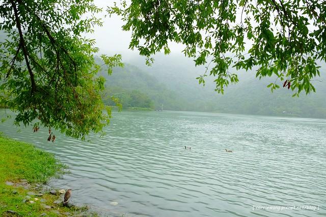 梅花湖 (18)