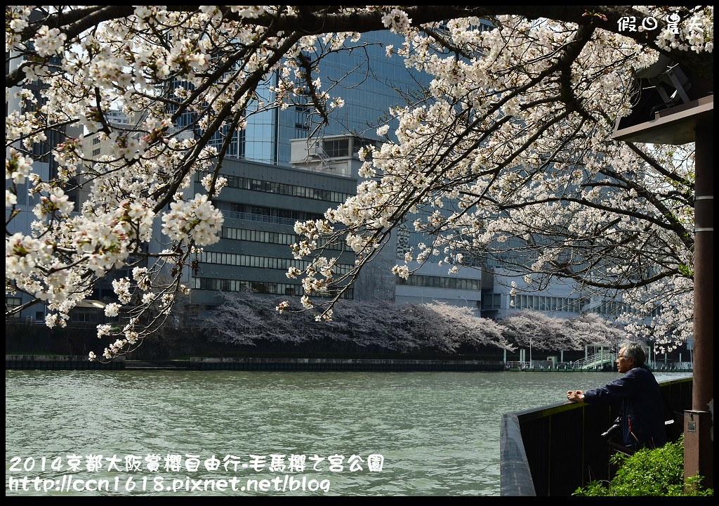 2014京都大阪賞櫻自由行-毛馬櫻之宮公園DSC_1951