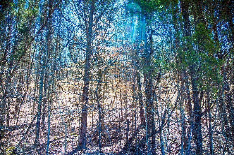 Hoosier National Forest - German Ridge Recreation Area - March 28, 2015