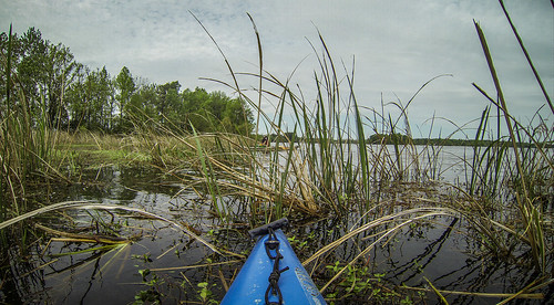 Lake Marion Plantation Islands-056