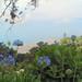 Madeira 2005