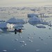 Baie de Disko, Groenland by M. Carpentier