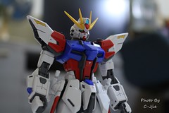 MG1/100 Gundam Build Strike