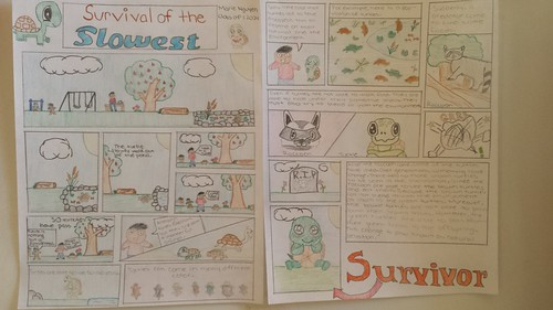 Compare And Contrast Essay Topics For High School Students Here Are Some Examples Of The Students Final Cartoons Essay Vs Paper also How To Write Essay Papers Seventh Grade Lesson Survival Of The Fittest  Days About English Language Essay