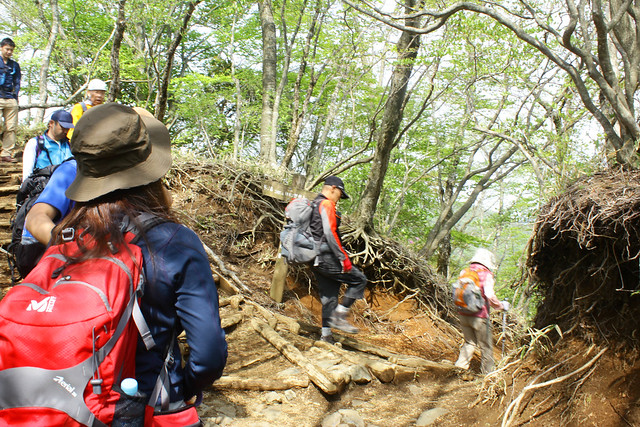 2014-05-24_00306_鍋割山.jpg