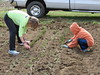 Onion Planting 2015, Photos by Ed Barker