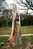 Rose climbs a tree stump