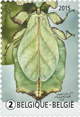 09 Plant of dier zegel3
