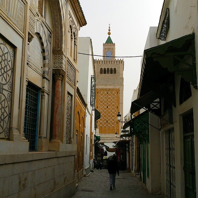 Old Tunis, or the Medina of...